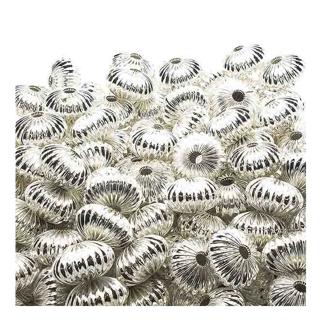 12x16mm Rondelle Shaped Fluted Beads - Silver Plated - 10pk